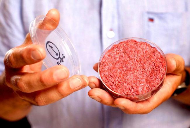 Carne sintetica - Hamburger in vitro - Memphis Meat - Cruelty Free Dotmug