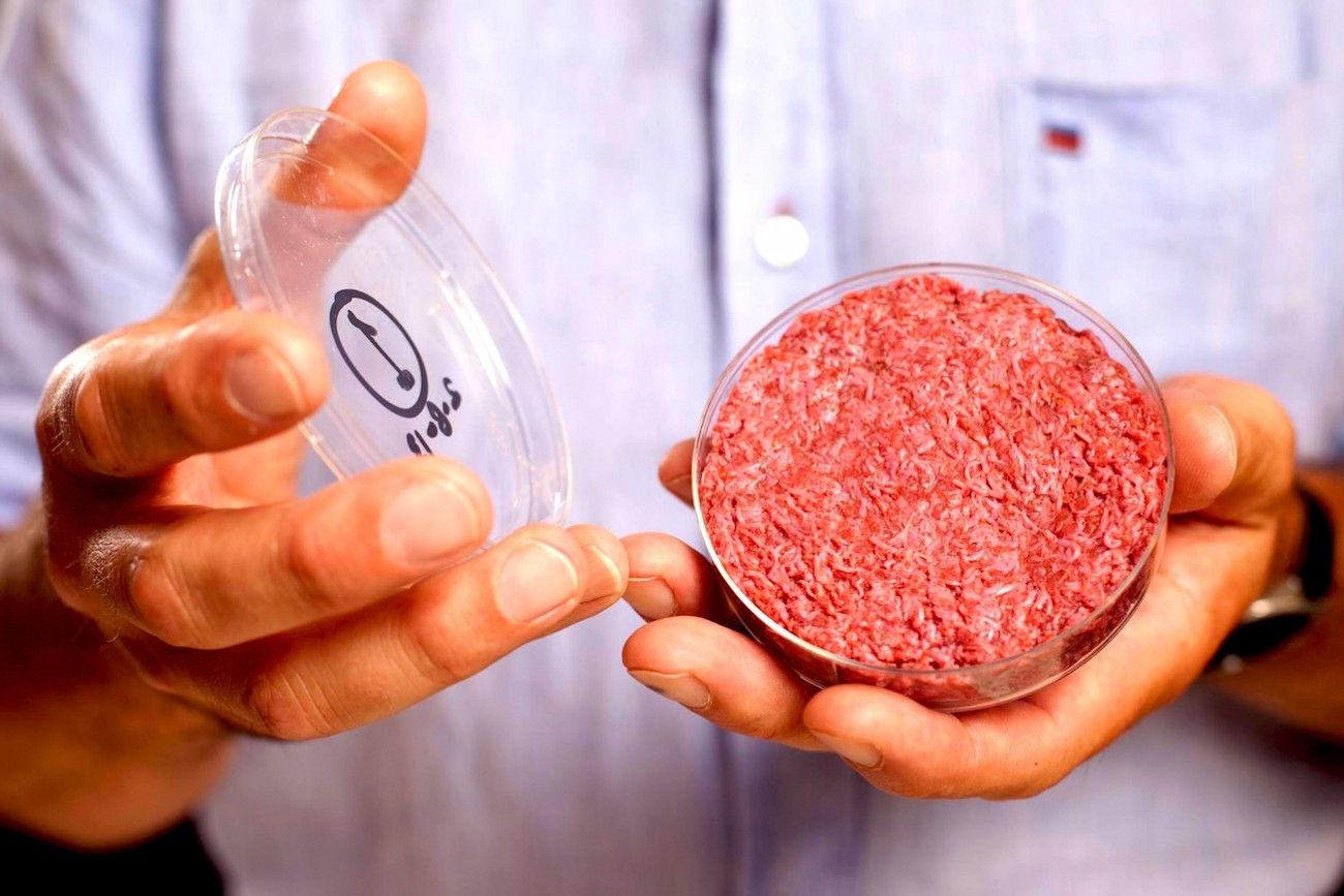https://www.dotmug.net/wp-content/uploads/2017/09/20.-Carne-sintetica-Hamburger-in-vitro-Memphis-Meat-Cruelty-Free-Dotmug.jpg