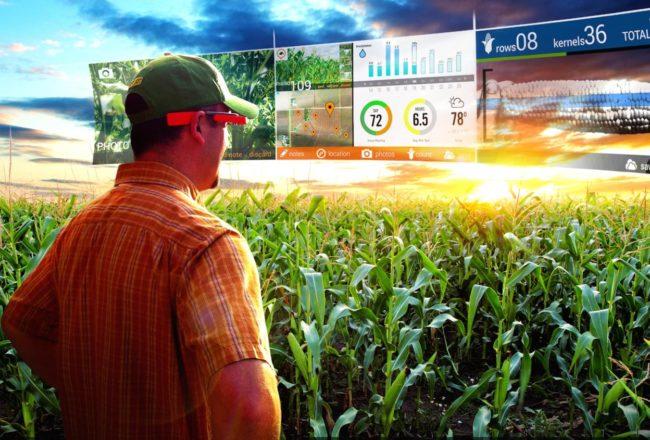 tech-farm