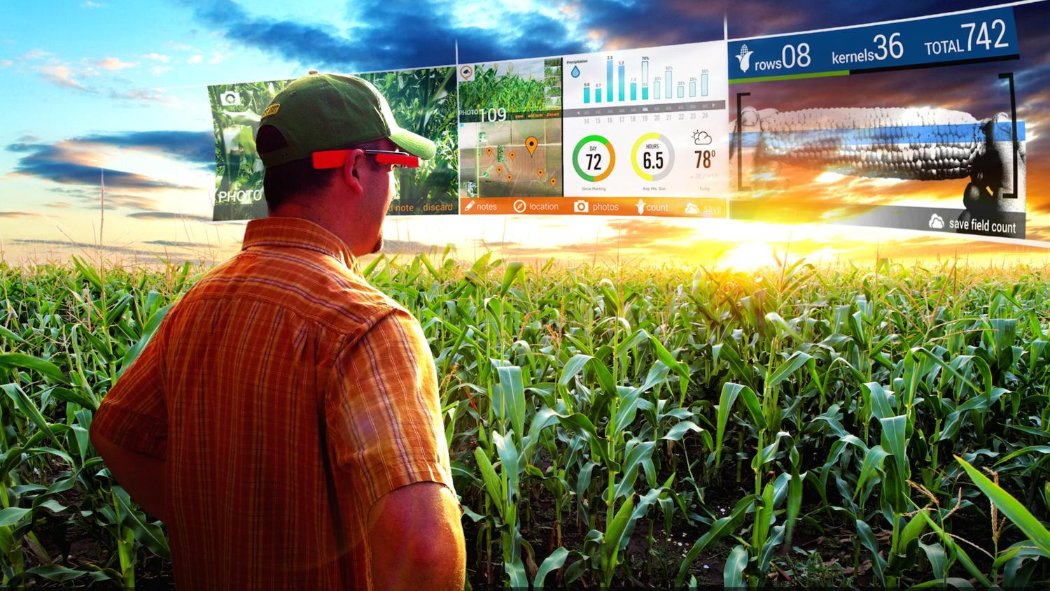 The Future of farming 4.0: drones and artificial intelligence