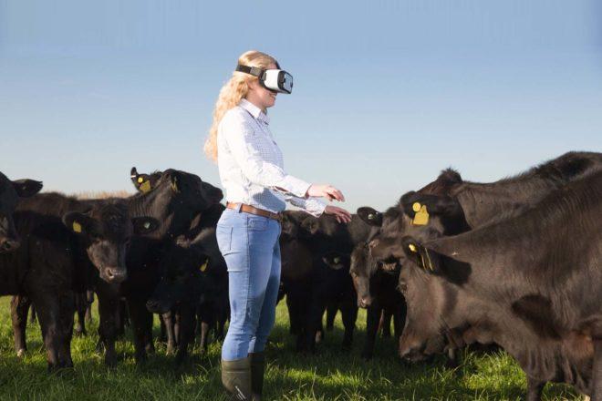 Boom in Millennial Farmers