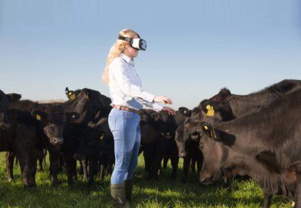 Boom di giovani agricoltori: ecco i Millennial Farmers